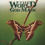 the world god made